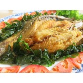 Fried fish with herb